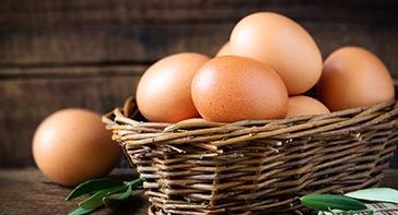 Nos œufs 100% frais